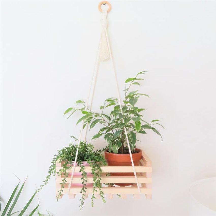 vase avec plantes suspendue avec une corde