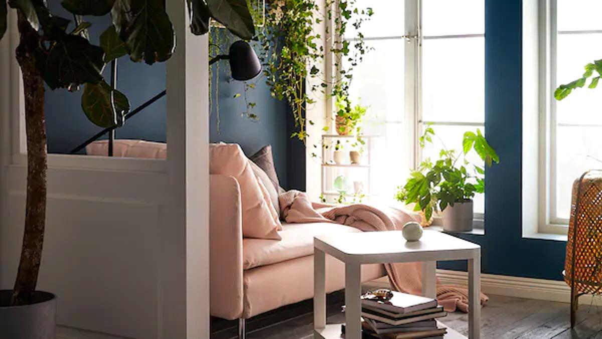 IKEA plantes salon