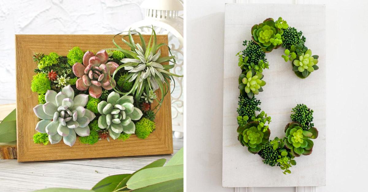 Idées déco avec succulentes.