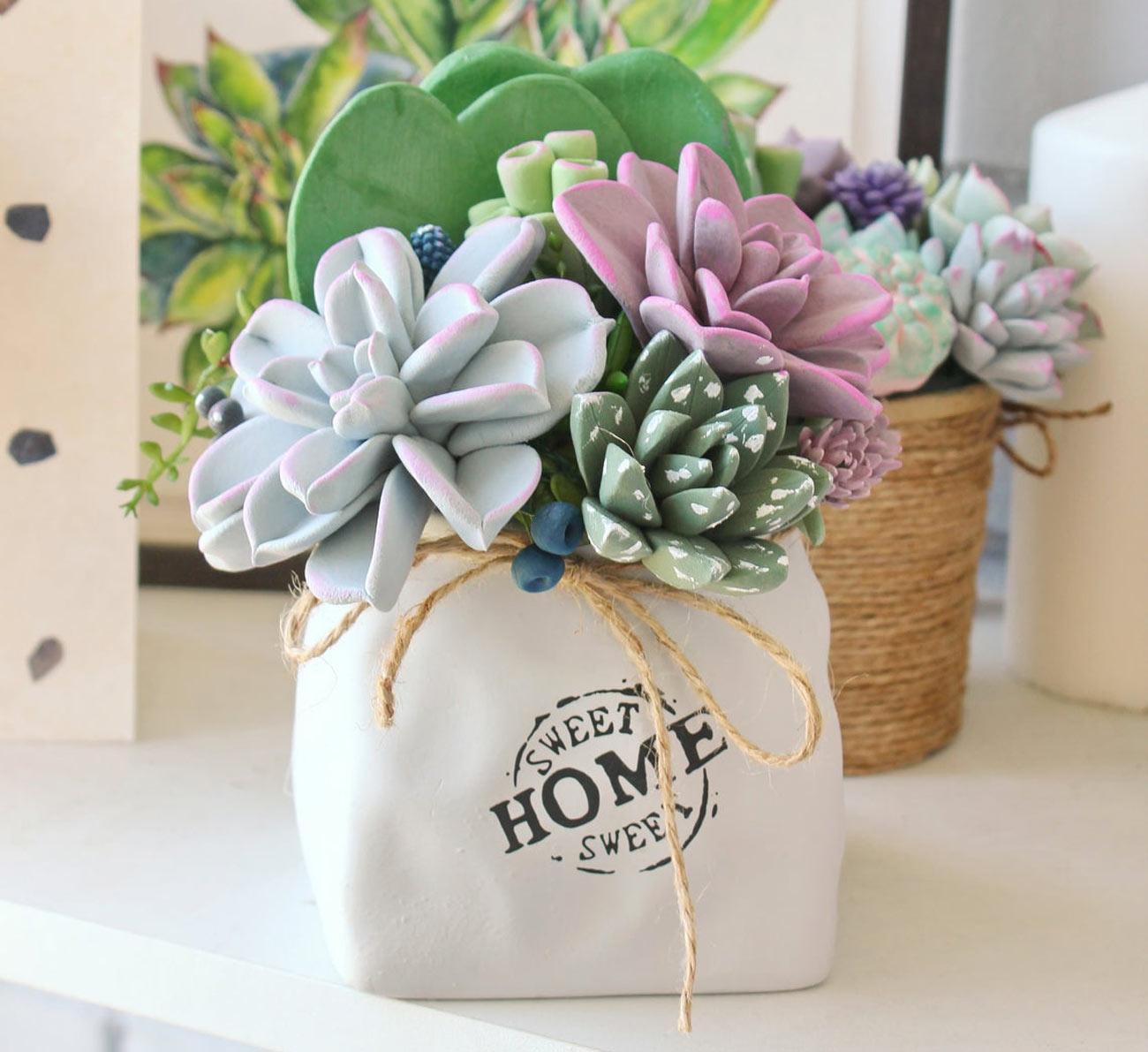 vase de plantes grasses