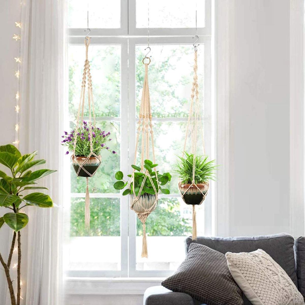 beaux vases suspendus