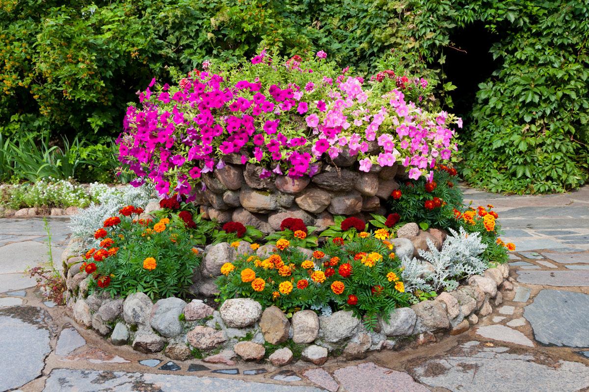 Pierres et fleurs décoration jardin.