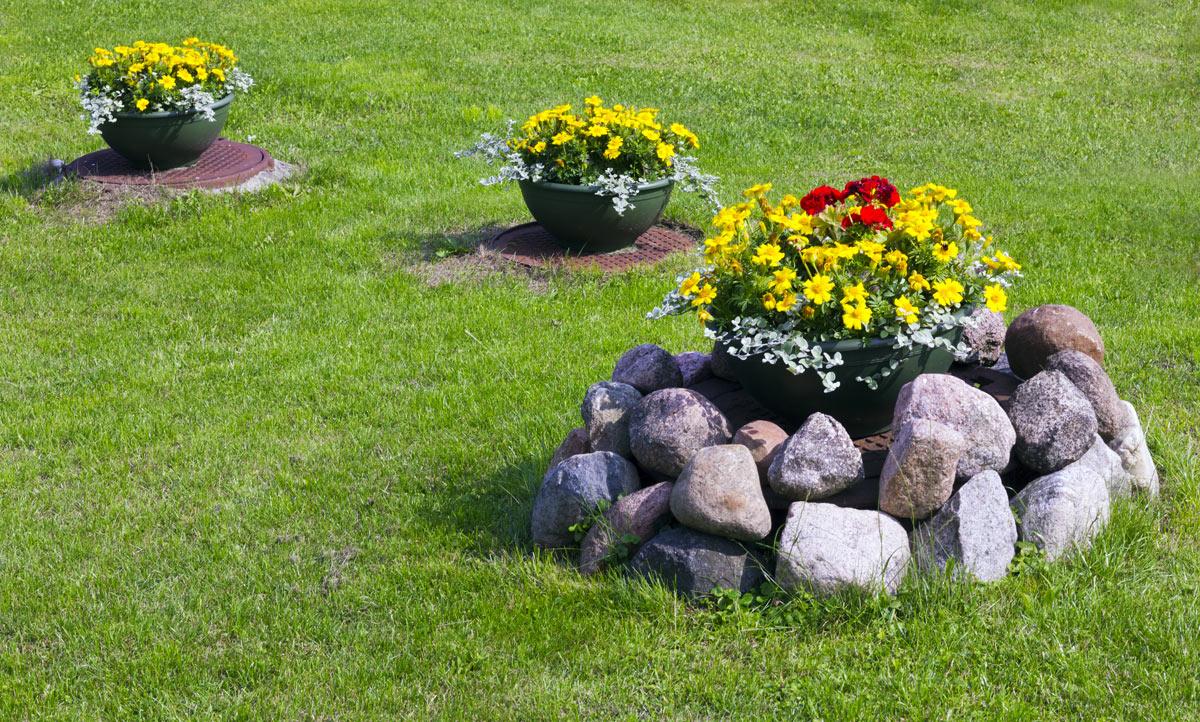 parterre de fleurs créatif dans le jardin