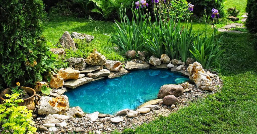 Réaliser un bel étang de jardin.