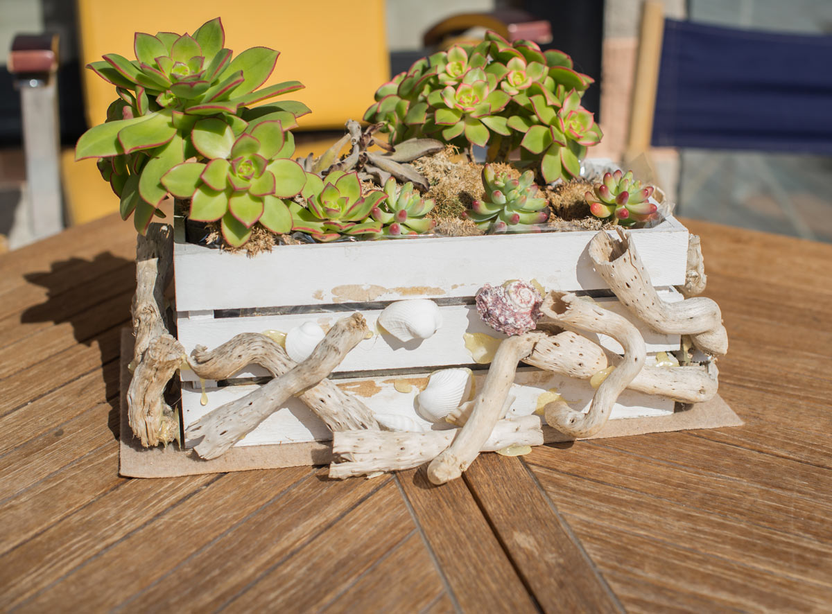 Caisse en bois DIY green.