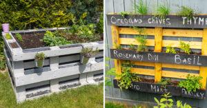 Potager jardin avec des palettes de bois.