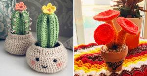 Plantes succulentes au crochet.