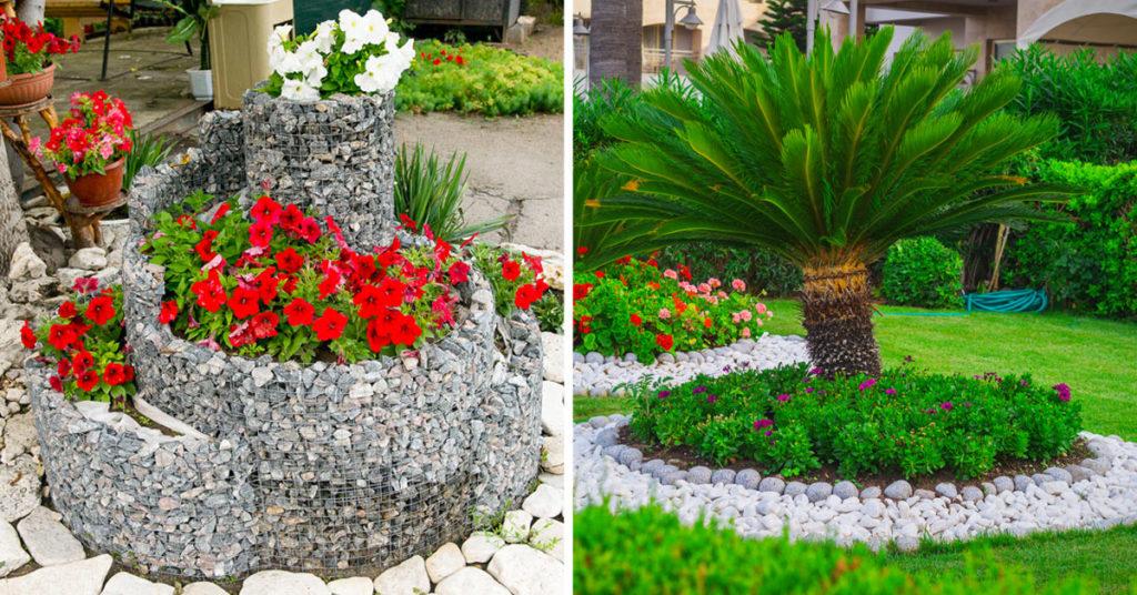 Plantes et pierres rocaille.