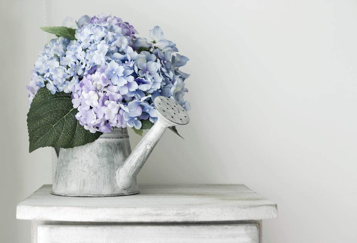 vase d'hortensias