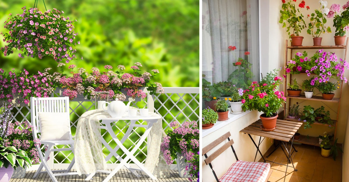 Transformer son balcon en un jardin de fleurs.