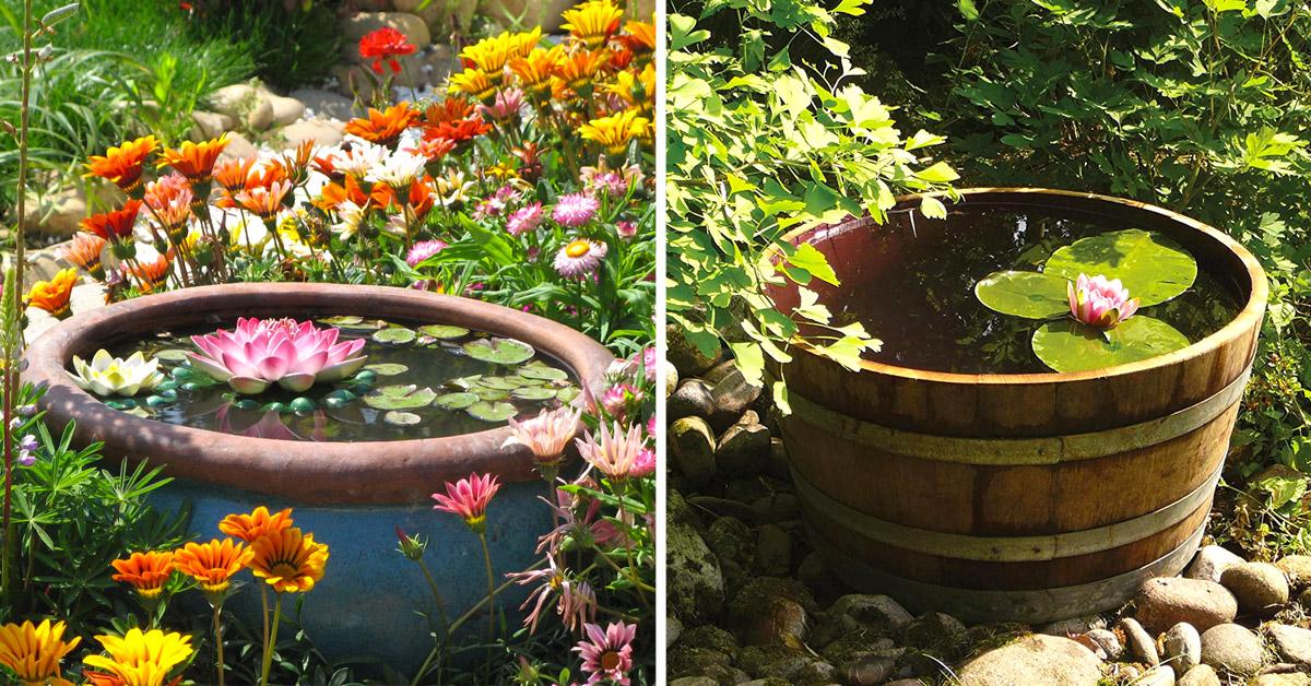 Petits étangs originaux en pots.