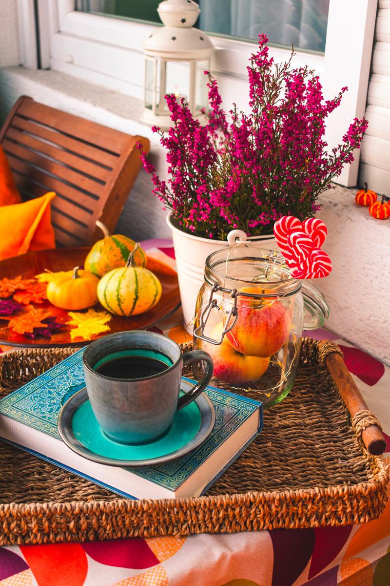 idee di piante per un balcone fiorito anche in autunno